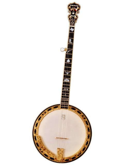 deering-texas-5-string-banjo