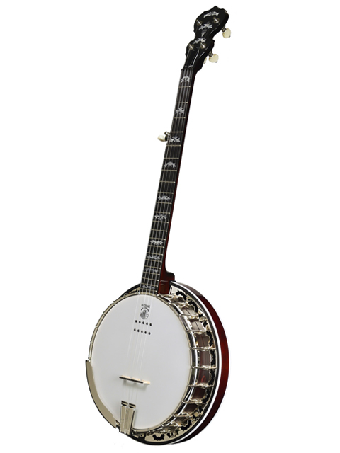 deering eagle ii acoustic electric banjo