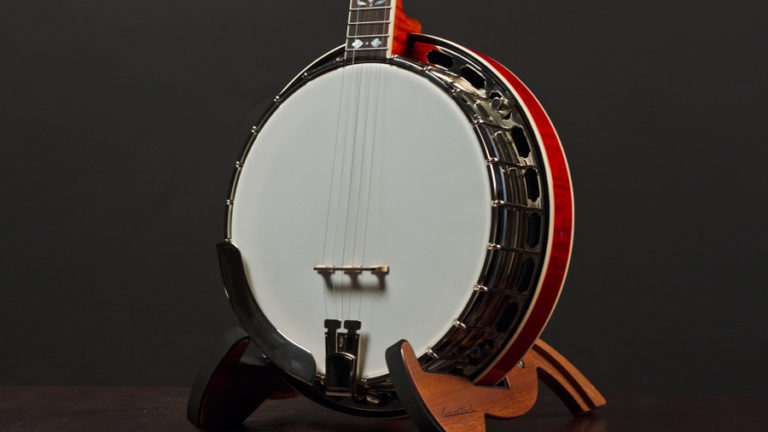 recording king elite 85 banjo