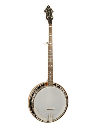 recording king m5 banjo
