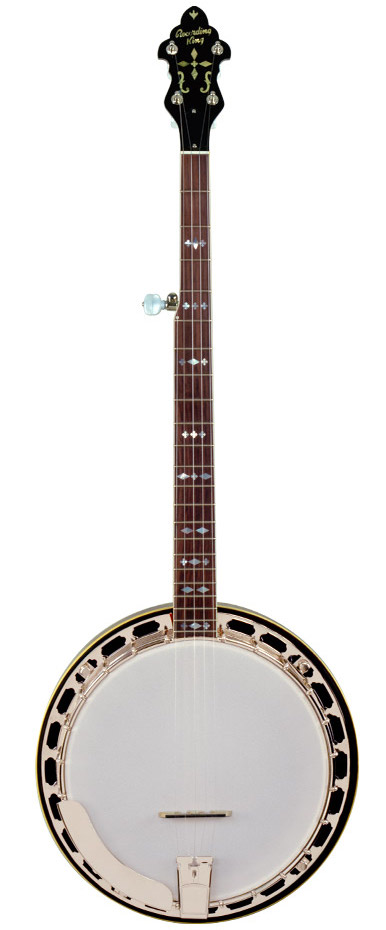 recording king m7 banjo